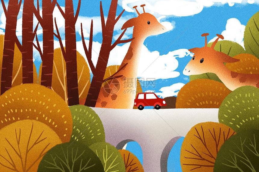 秋天的动物丛林图片