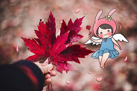 秋天的精灵图片