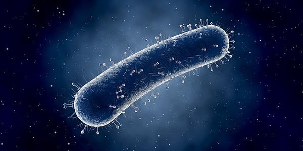 细菌细胞场景图片