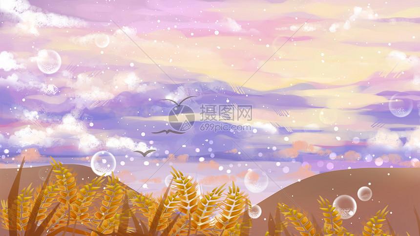 秋季霜花图片