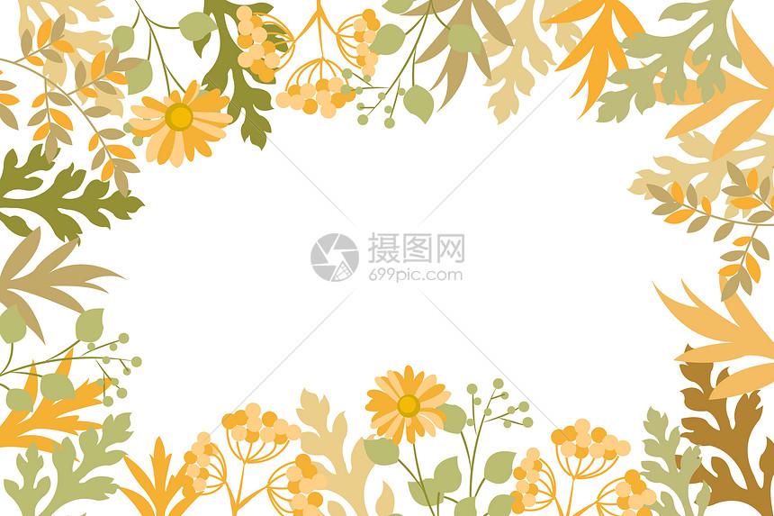 秋天植物花卉背景图片