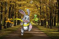 龟兔赛跑图片