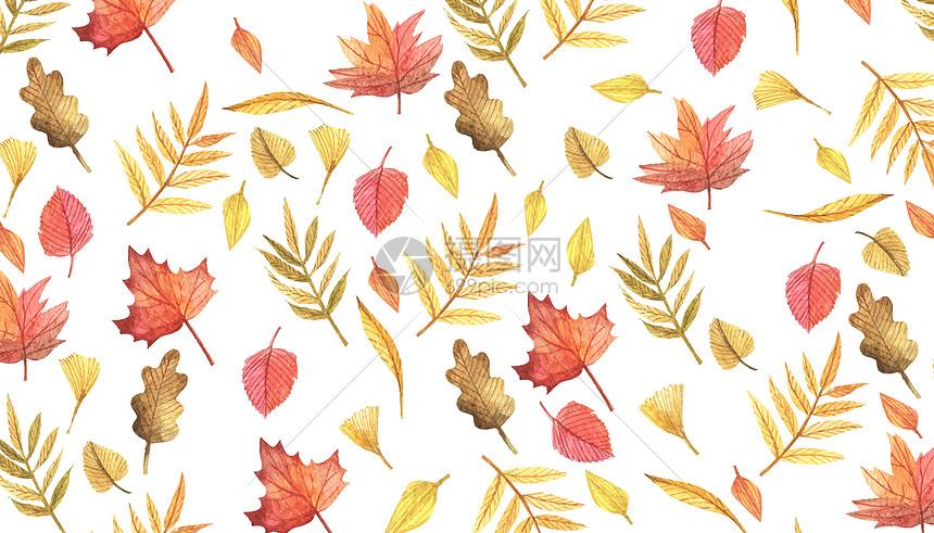 水彩手绘秋天叶子背景图片