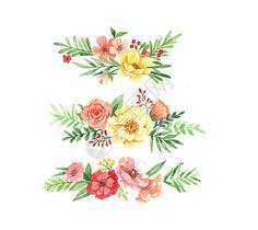 透明水彩花卉边框图片