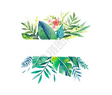 小清新花卉边框透明底图片