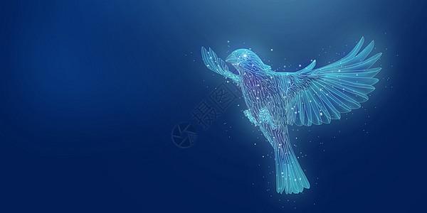 唯美飞鸟图片
