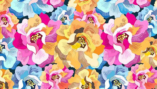 绚丽花卉背景图片