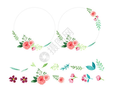 花卉边框透明底素材图片