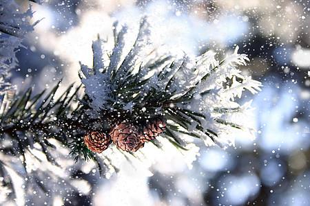 小雪背景图片