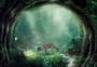 森林深处图片