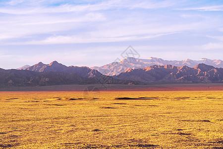 高山草原图片
