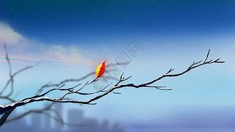 立冬时节图片