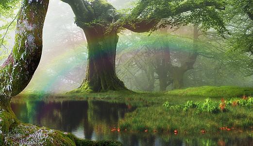 奇幻森林图片