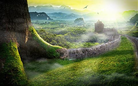 树林里的城堡图片