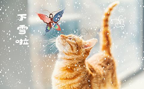 猫咪和小仙女图片