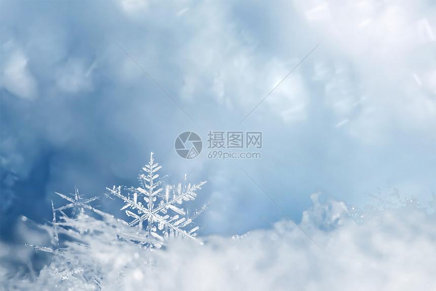 唯美雪花图片