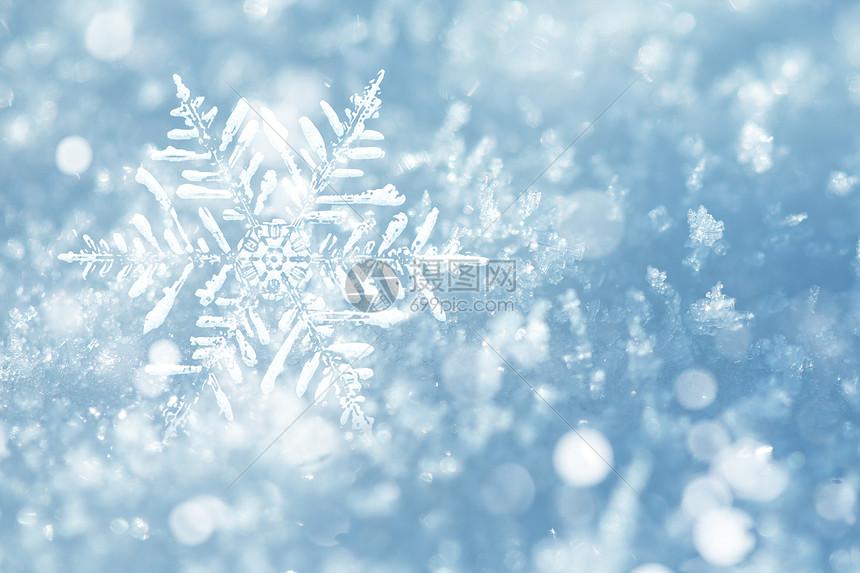 浪漫雪花背景图片