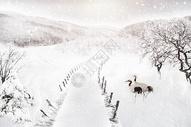 冬天的雪景图片
