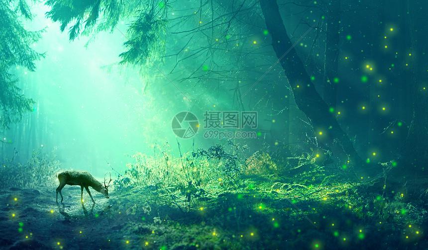 梦幻森林背景图片