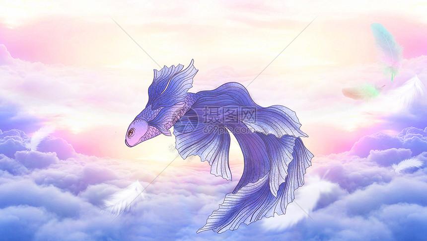 云层上的金鱼图片