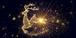 圣诞节的麋鹿图片
