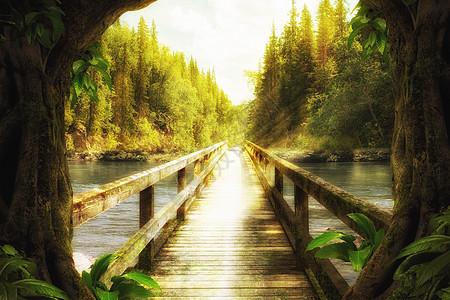 奇幻唯美森林图片