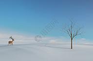 雪地里的梅花鹿图片
