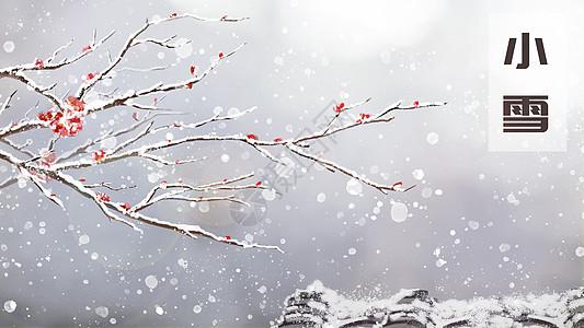 小雪-雪压枝头图片