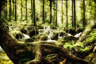 奇幻唯美森林400900775图片