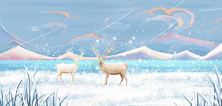 雪地里的鹿图片