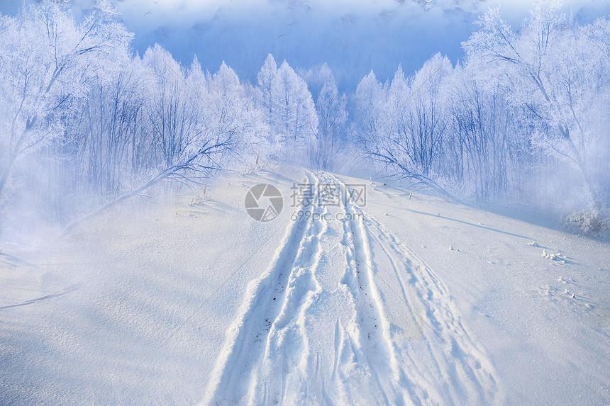 冬天雪路图片