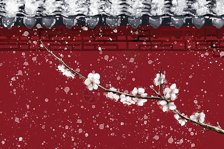 雪中梅花图片