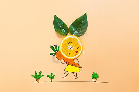 爱吃萝卜的小兔子图片