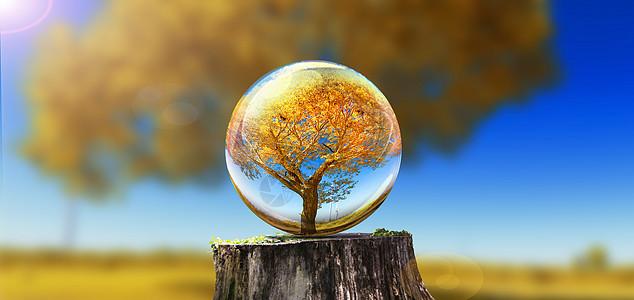水晶球里的秋天图片