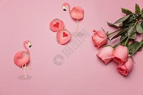 寻找爱的火烈鸟图片