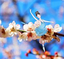 花样年华-芭蕾舞者图片