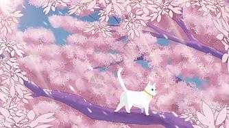 春天樱花盛开图片