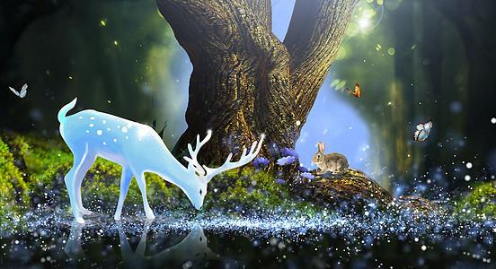 林深见鹿图片