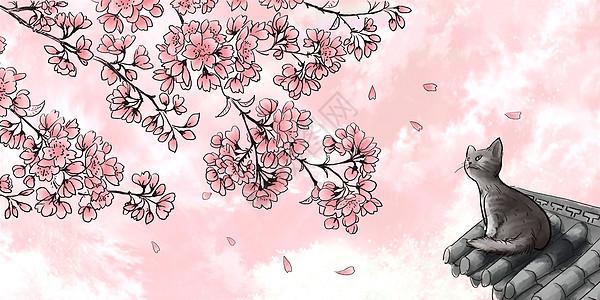 猫与樱花图片