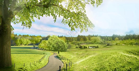 春天的风景图片