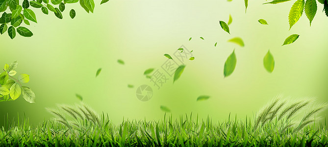 春天草地图片