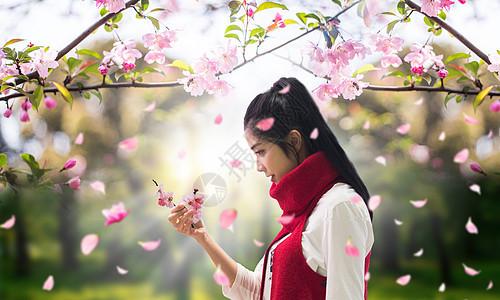 桃花树下的少女图片