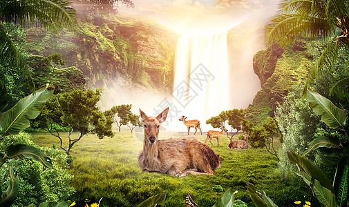 林深时见鹿图片