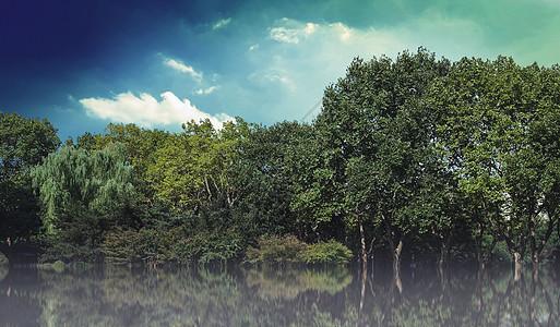 植树节背景图片