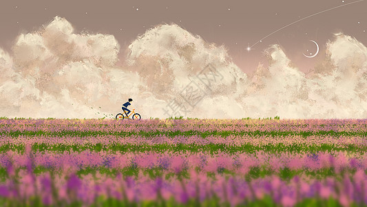 夕阳下的花海图片