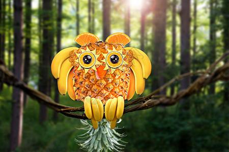 水果猫头鹰图片