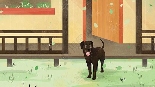 小清新狗狗站在院子宠物插画图片
