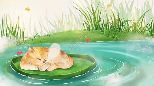 小猫荷塘小憩插画图片