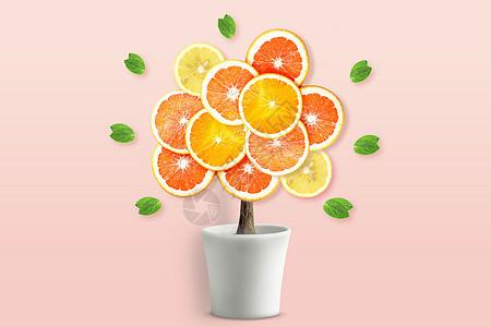 创意橙子树图片