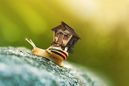 蜗居创意合成图片